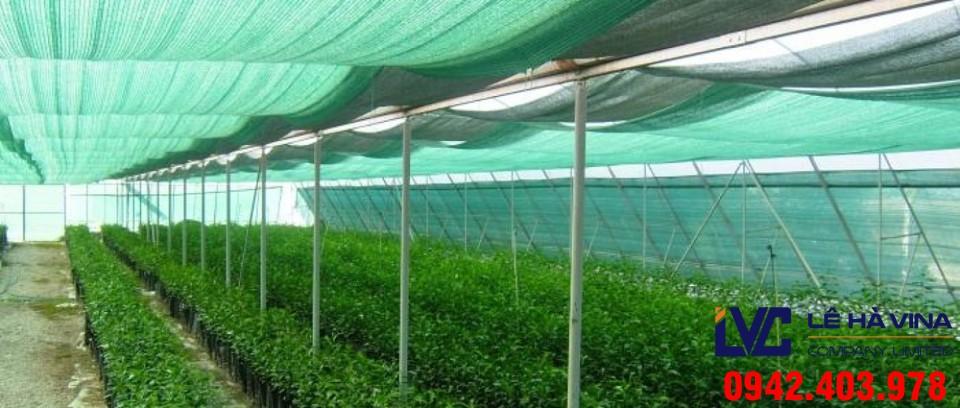 Lưới che nắng trồng rau, Cách lắp đặt lưới, Lê Hà Vina, Lưới che chắn, Mua lưới che nắng