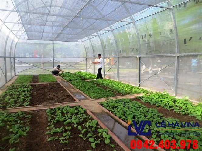 Giá lưới chắn côn trùng, Lưới chắn côn trùng, Lưới, Lưới nhựa chống côn trùng, Giá lưới, Lê Hà Vina