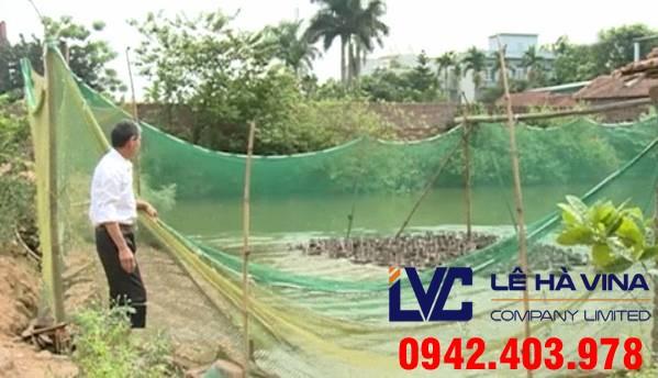 Lưới quây chăn nuôi, Lê Hà Vina, Lê Hà Vina bán lưới, Lưới che nắng Thái Lan, Lưới chăn nuôi, Lê Hà Vina