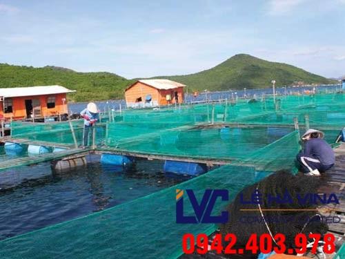 Lưới nuôi trồng thủy sản, Lưới, Lê Hà Vina, Lưới nhựa, Lưới nuôi cá, Công ty Lê Hà Vina