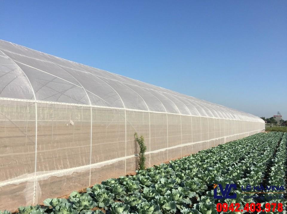 Lưới nông nghiệp, Lê Hà Vina, Lưới Thái Lan, Lưới nhựa, Giá lưới nhựa