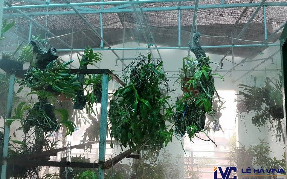 Lưới che nắng cho lan, Lưới che nắng, Lê Hà Vina, Giá lưới che nắng cho lan, Giá lưới che nắng lan Hàn Quốc