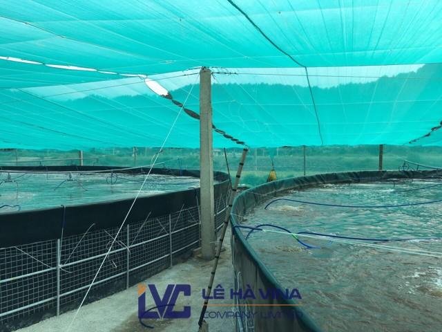 Lưới che nắng, Dây cáp cho đầm nuôi tôm, lưới che nắng Đài Loan, Lưới che nắng Thái Lan, cáp lụa mạ kẽm nhúng nóng 4mm
