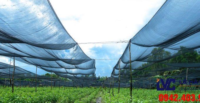 Lưới che nắng, Lưới che nắng Thái Lan, Lê Hà Vina, Lưới nhựa che nắng của Lê Hà, Lưới