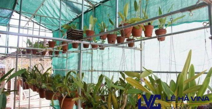 Lưới trồng lan Đài Loan, Lưới trồng lan, Lê Hà Vina, Lưới che lan, Lưới che nắng Thái Lan