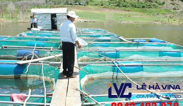 Lưới nuôi trồng thủy sản, Lưới nhựa, Công ty Lê Hà Vina, Lưới, Lưới nuôi trồng