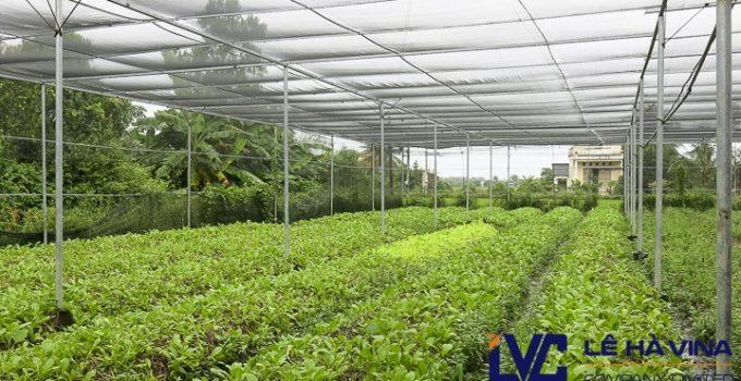Lưới trồng rau sạch, Giá bán lưới trồng rau sạch, Lê Hà Vina, Lưới che nắng, Lưới trồng rau
