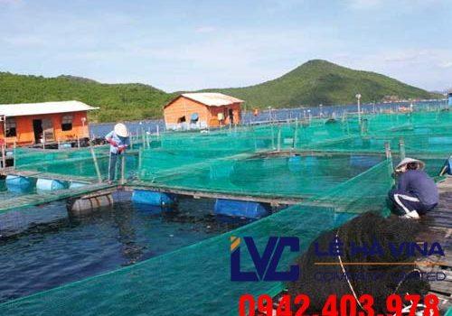 Lưới nuôi trồng thủy sản, Lê Hà Vina, Lưới Thái Lan, Lưới
